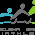 cropped-lgt-logo-wlasciwe-0-1